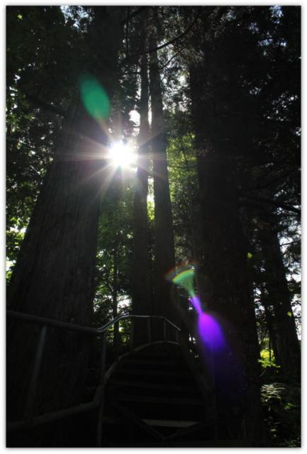 青森県 西目屋村 岩谷観世音 観光 写真
