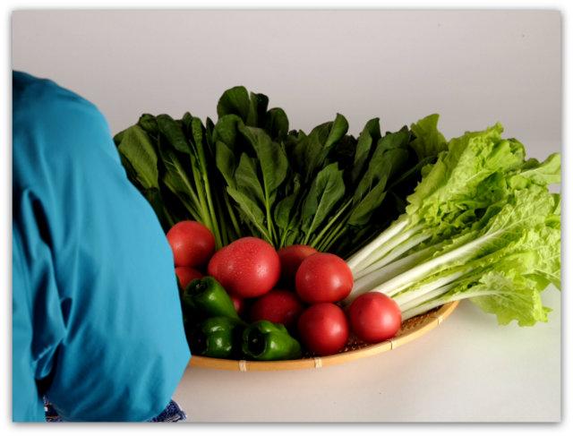 野菜 商品 特産物 広告 チラシ 宣伝 食べ物 飲み物 写真 撮影 出張 商業 カメラマン 写真館 フリーカメラマン メニュー パンフレット 販促物