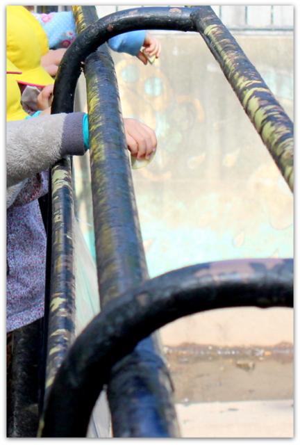 保育所 保育園 幼稚園 遠足 行事 イベント バス遠足 写真 スナップ 同行 出張 派遣 委託 カメラマン 写真館 フリーカメラマン 写真 撮影 インターネット販売 弘前 青森 五所川原 秋田 岩手