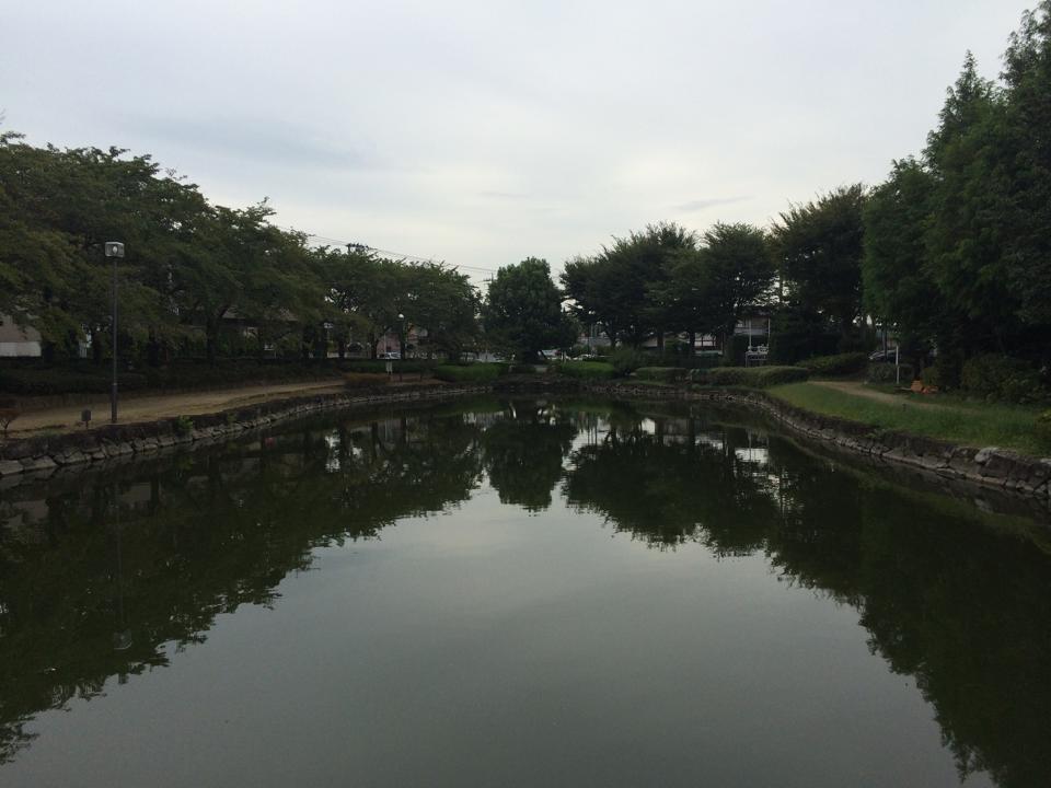 昼夜逆転なおろう会 上沼公園 あずまやのなかから沼撮影