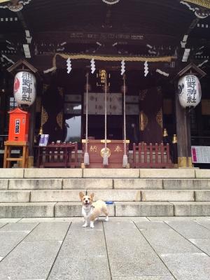 そる熊野神社P_20140709_142521