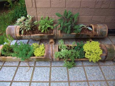 竹プランター使用例