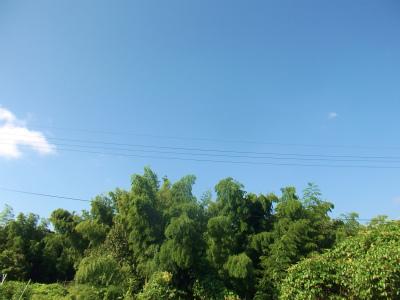 9.7秋の空