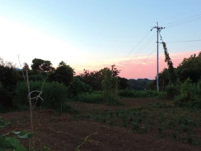 9.23夜明け前の畑