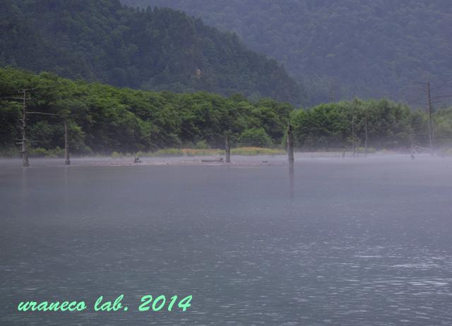 8月25日雨の大正池5