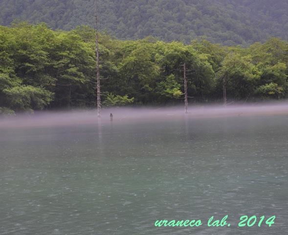 8月25日雨の大正池