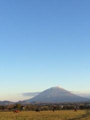 20141015 レイクヴィラファーム&メジロっ仔達の守護神羊蹄山