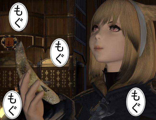 猫のグルメ24