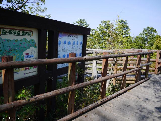ajiwai-village-33.jpg
