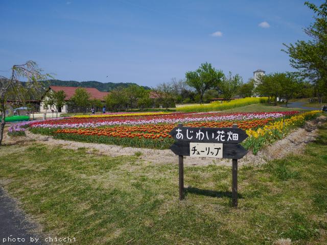 ajiwai-village-8.jpg