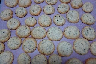 紅茶の絞り出しクッキー
