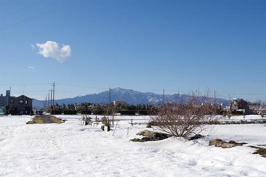 雪散歩 14