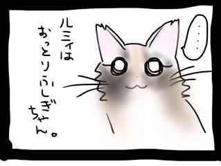 fc2blog_201403261336146bd.jpg