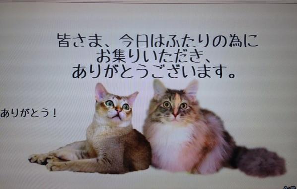 fc2blog_20140712103204496.jpg