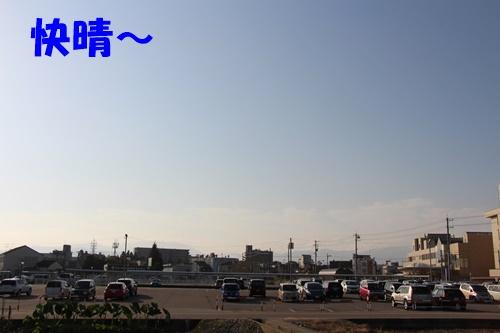 IMG_4697.jpg