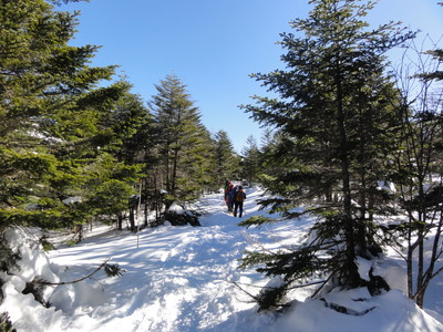 140221北八ヶ岳スノーハイク02