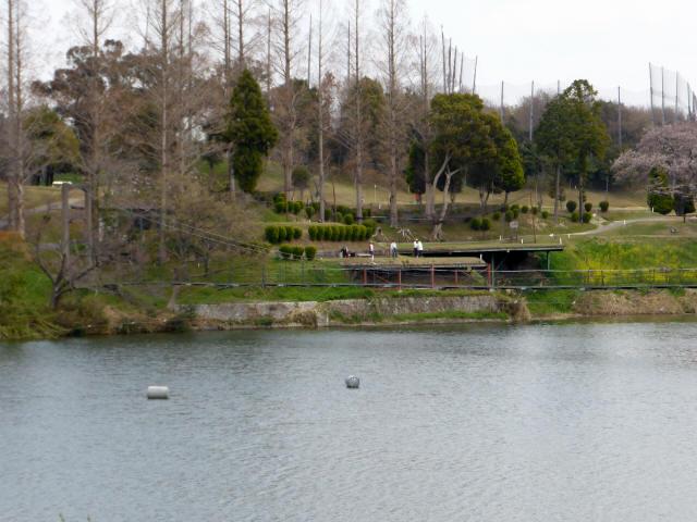 泉南CCの吊橋6
