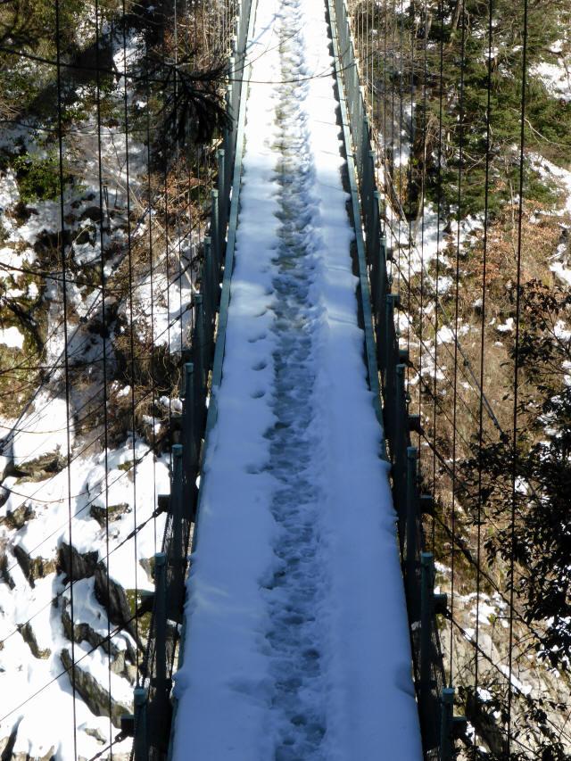 天竜峡つつじ橋19