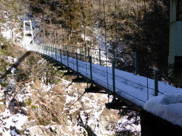 天竜峡つつじ橋18