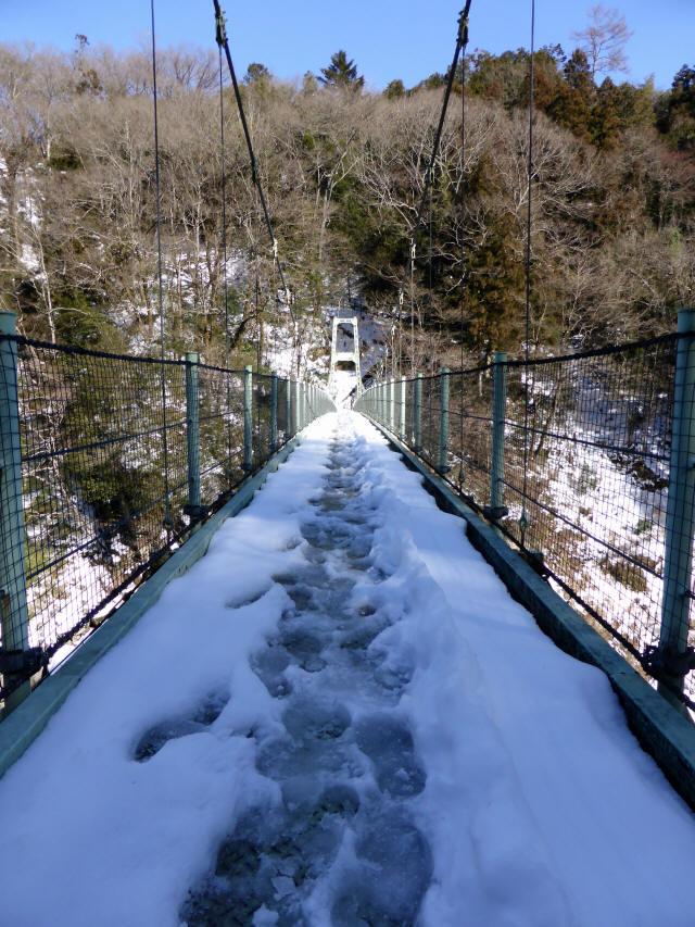 天竜峡つつじ橋17