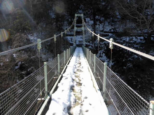 天竜峡つつじ橋16
