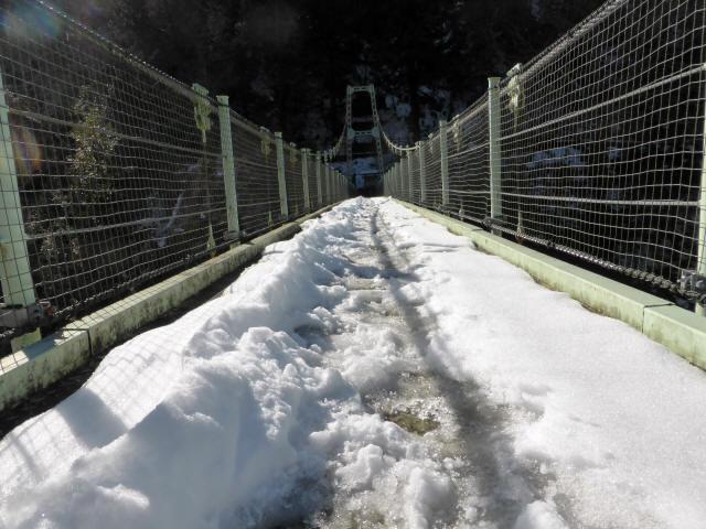 天竜峡つつじ橋15