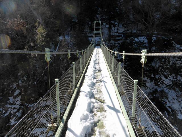 天竜峡つつじ橋14