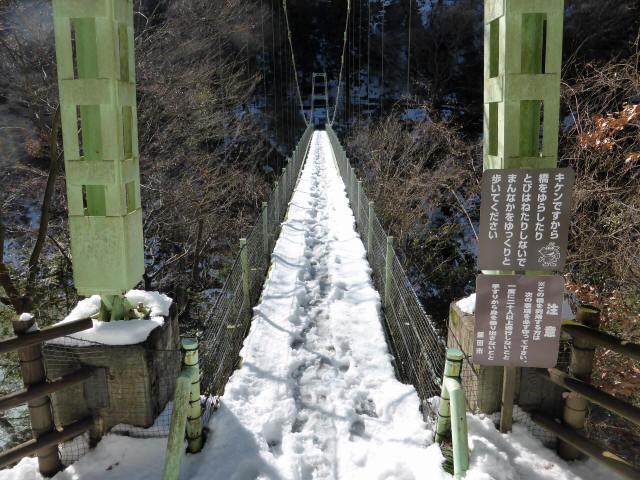 天竜峡つつじ橋13