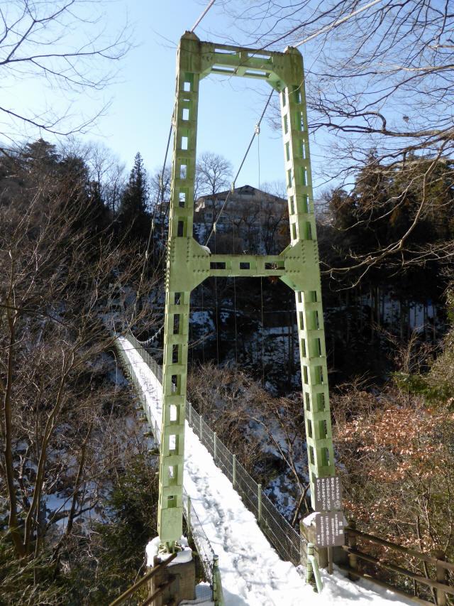 天竜峡つつじ橋12
