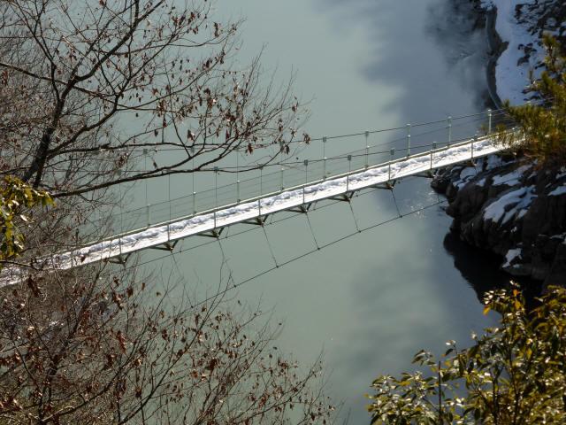 天竜峡つつじ橋11