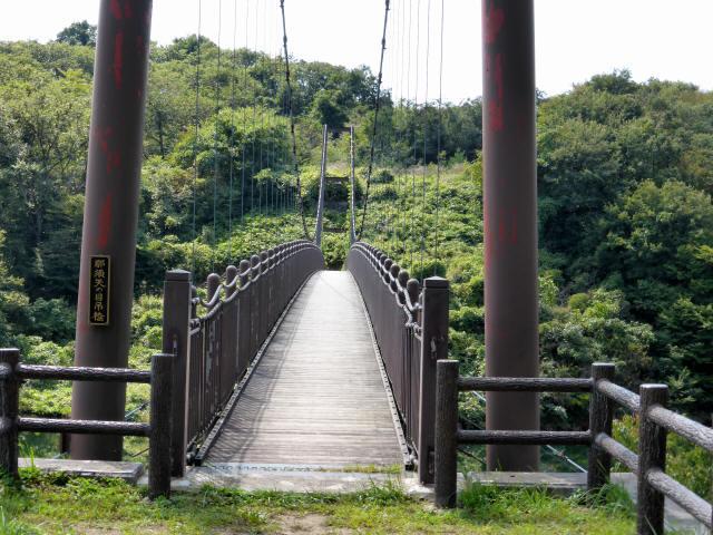 那須矢の目吊橋2