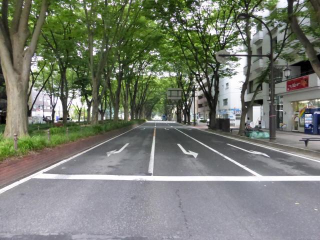 仙台定禅寺通3