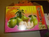 麻豆文旦140903