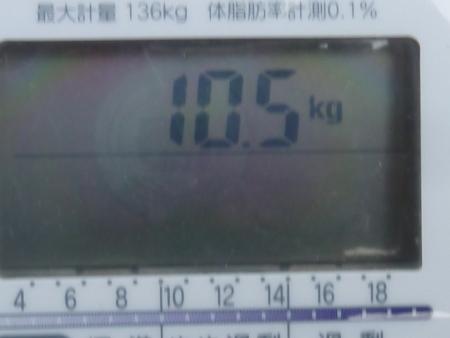 P1250074.jpg