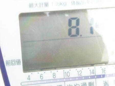 P1250080.jpg