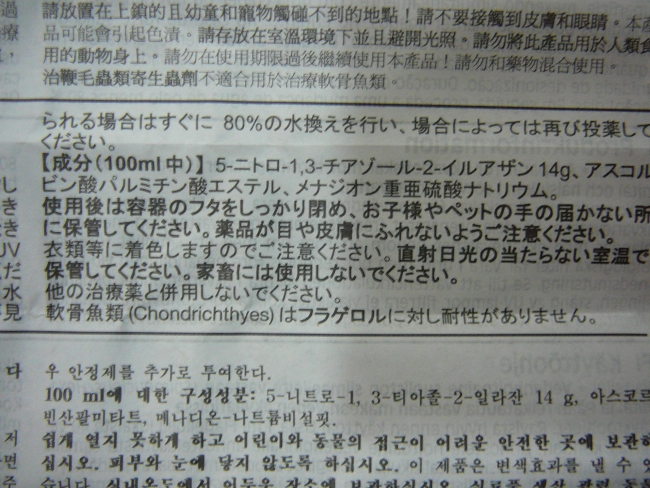 P1090101.jpg
