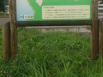 20140910-06.jpg