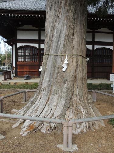 140317yoshii10.jpg
