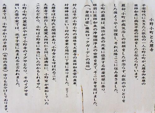 140330murahi33.jpg