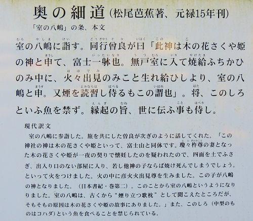 140401omiwa23.jpg