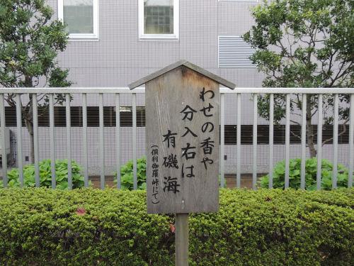 140925fuka46.jpg