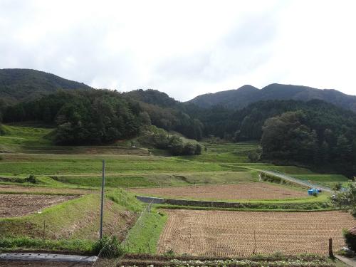 見事な畦刈り