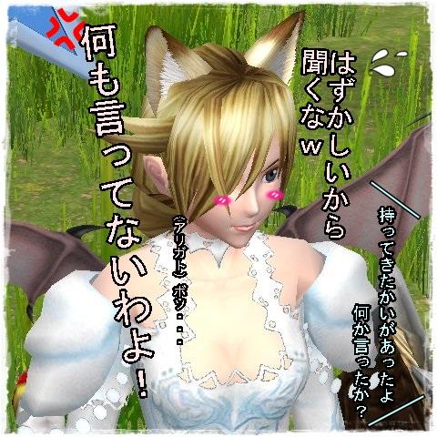 TODOSS_20140610_021510-203D.jpg