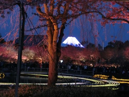 遠くの富士山1