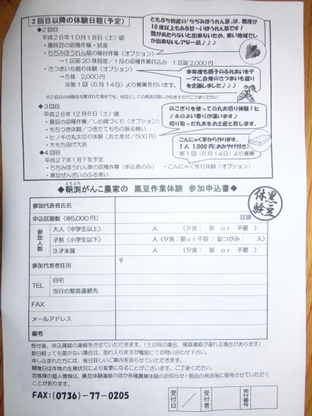 黒豆作業体験002