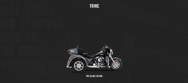 TRIKE.jpg