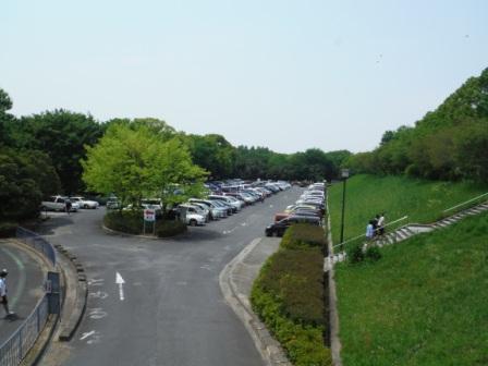 1庄内緑地公園3