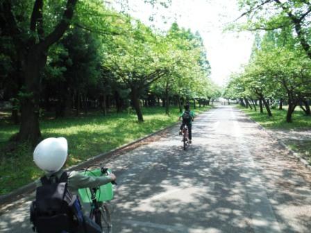 1庄内緑地公園5