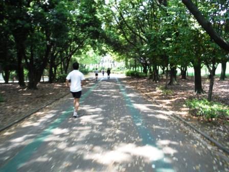 1庄内緑地公園13