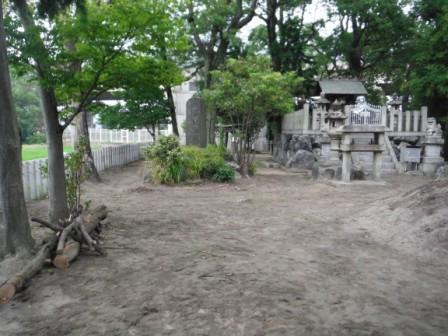 1神社の木が倒れてる3